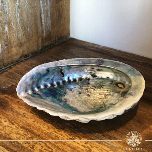 ABALONE SHELL Smudging bowl for Palo Santo and White Sage at Gaia Center in Cyprus. Shop online at https://gaia-center.com
