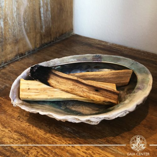 ABALONE SHELL Smudging bowl for Palo Santo and White Sage at Gaia Center in Cyprus. Shop online at https://www.gaia-center.com