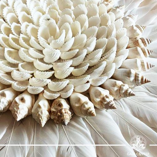 Natural seashell and feathers wall decor at Gaia Center in Cyprus. Shop online at https://gaia-center.com. Cyprus and Worldwide shipping.