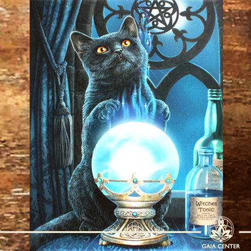 Canvas Plaque Witches Apprentice Cat | Wall Art | at Gaia Center | Cyprus.