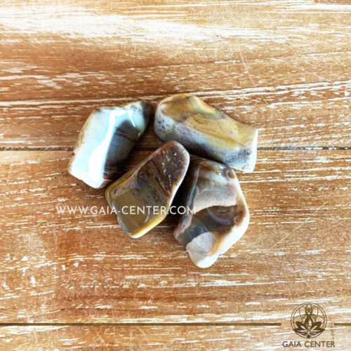 Petrified Wood 30-40mm Large Tumblestones. Crystals and semiprecious gemstone selection at GAIA CENTER | Cyprus.