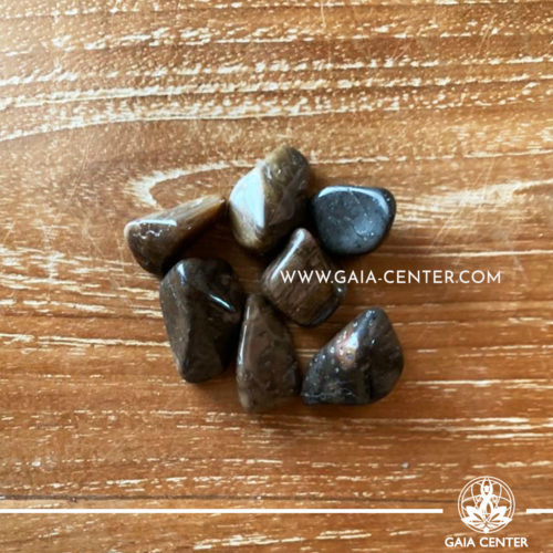 Palmwood Tumbled stones from USA, size 20-30mm. Crystals and Gemstone selection at GAIA CENTER | Cyprus.